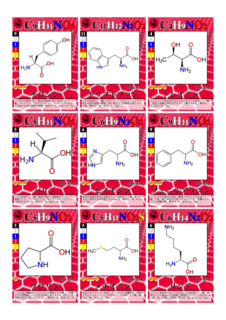 molecules1.png